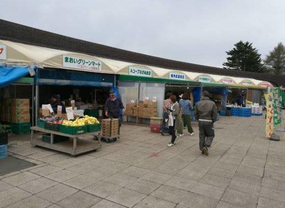 道の駅「マオイの丘公園」は市場で大賑わいでした!